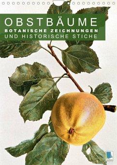 Obstbäume: Botanische Zeichnungen und historische Stiche (Wandkalender 2022 DIN A4 hoch)