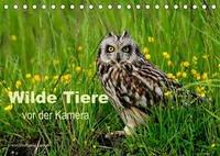 Wilde Tiere vor der Kamera (Tischkalender 2022 DIN A5 quer)