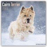 Cairn Terrier - Cairn Terrier 2022 - 16-Monatskalender