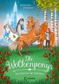 Die Wolkenponys (Band 1) - Das Geheimnis der Edelsteine