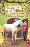 Große Sorge um Sternchen / Ponyhof Apfelblüte Bd.18