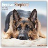 German Shepherds - Deutsche Schäferhunde 2022 - 18-Monatskalender mit freier DogDays-App