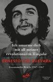 Ich umarme dich mit all meiner revolutionären Hingabe (eBook, ePUB)