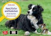 Hund, Katze und Kaninchen. Unsere Haustiere. Kamishibai Bildkarten und Memo-Spiel