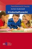 Familienrecht heute Kindschaftsrecht (eBook, PDF)
