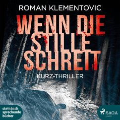 Wenn die Stille schreit, 1 MP3-CD - Klementovic, Roman