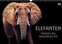 Elefanten - Portraits der besonderen Art (Wandkalender 2022 DIN A3 quer)