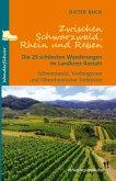 Zwischen Schwarzwald, Rhein und Reben