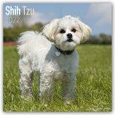 Shih Tzu 2022 - 18-Monatskalender mit freier DogDays-App