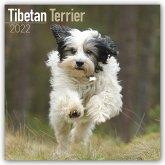Tibetan Terriers - Tibet-Terrier - Tibet Terrier 2022 - 18-Monatskalender mit freier DogDays-App