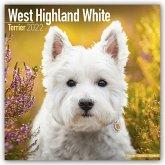 West Highland White Terriers - Westies 2022 - 18-Monatskalender mit freier DogDays-App