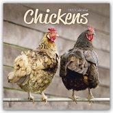 Chickens - Hühner 2022 - 18-Monatskalender
