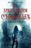 The Equilibrium Chronicles