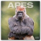 Apes - Affen 2022