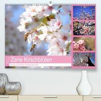 Zarte Kirschblüten - Berauschende Gedankendüfte (Premium, hochwertiger DIN A2 Wandkalender 2022, Kunstdruck in Hochglanz)