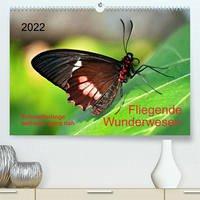 Fliegende Wunderwesen. Schmetterlinge weltweit, ganz nah (Premium, hochwertiger DIN A2 Wandkalender 2022, Kunstdruck in Hochglanz)