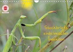 GEOclick Lernkalender: Insekten (Wandkalender 2022 DIN A4 quer)