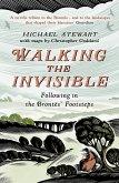 Walking The Invisible (eBook, ePUB)