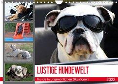 LUSTIGE HUNDEWELT Hunde in ungewönlichen Situationen (Wandkalender 2022 DIN A4 quer)