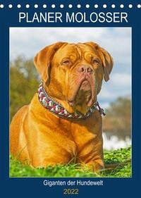 Planer Molosser - Giganten der Hundewelt (Tischkalender 2022 DIN A5 hoch)