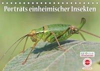 GEOclick Lernkalender: Porträts einheimischer Insekten (Tischkalender 2022 DIN A5 quer)