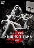 EIN DUNKLES GEHEIMNIS (eBook, ePUB)