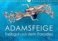 ADAMSFEIGE - Treibgut aus dem Paradies (Wandkalender 2022 DIN A4 quer)