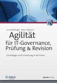 Agilität für IT-Governance, Prüfung & Revision