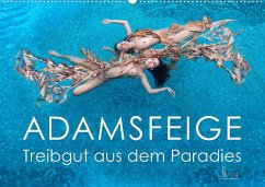 ADAMSFEIGE - Treibgut aus dem Paradies (Wandkalender 2022 DIN A2 quer)