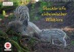 GEOclick Lernkalender: Steckbriefe einheimischer Wildtiere (Wandkalender 2022 DIN A3 quer)