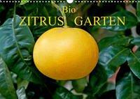 Bio Zitrus Garten (Wandkalender 2022 DIN A3 quer)