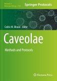 Caveolae: Methods and Protocols
