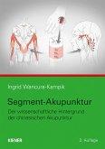 Segment-Akupunktur