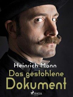 Das gestohlene Dokument (eBook, ePUB) - Mann, Heinrich