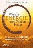 Was die Energie zum Fließen bringt (eBook, ePUB)