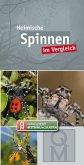 Spinnen im Vergleich