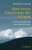 Eine kurze Geschichte des Klimas (eBook, ePUB)