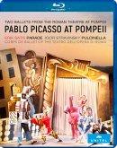 Pablo Picasso at Pompeii, 1 Blu-ray