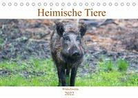 Heimische Tiere - Wildschweine (Tischkalender 2022 DIN A5 quer)