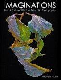 Imaginations (eBook, ePUB)
