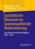 Sozialistische Ökonomie im Spannungsfeld der Modernisierung
