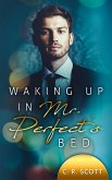 Waking up in Mr. Perfect's Bed (eBook, ePUB)