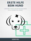 Erste Hilfe beim Hund (eBook, ePUB)