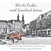 Wie die Farben nach Grauland kamen, Audio-CD