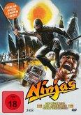 Ninjas-Die Rückkehr der legendären Schattenkrieger