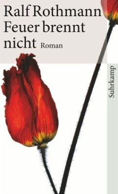 Feuer brennt nicht (Mängelexemplar) - Rothmann, Ralf