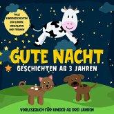 Gute Nacht Geschichten ab 3 Jahren: Tolle Kindergeschichten zum Lernen, Einschlafen und Träumen: Hörbuch für Kinder ab drei Jahren (MP3-Download)