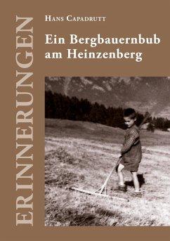 Ein Bergbauernbub am Heinzenberg (eBook, ePUB)