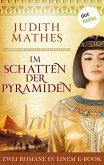 Im Schatten der Pyramiden (eBook, ePUB)