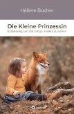 Die Kleine Prinzessin (eBook, ePUB)